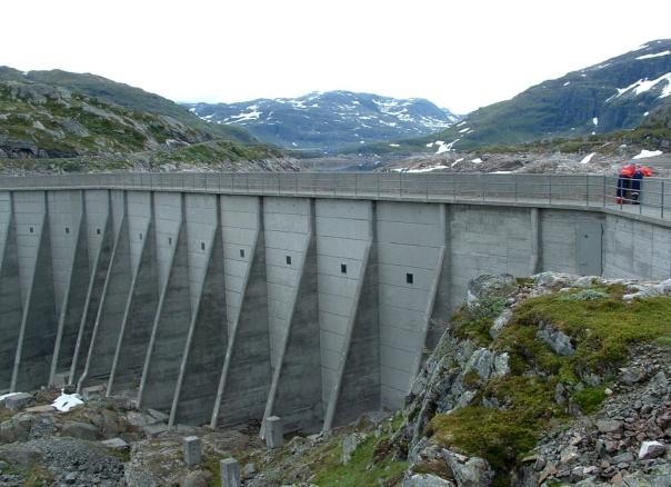 Luftsiden, deler av dammen sett fra venstre